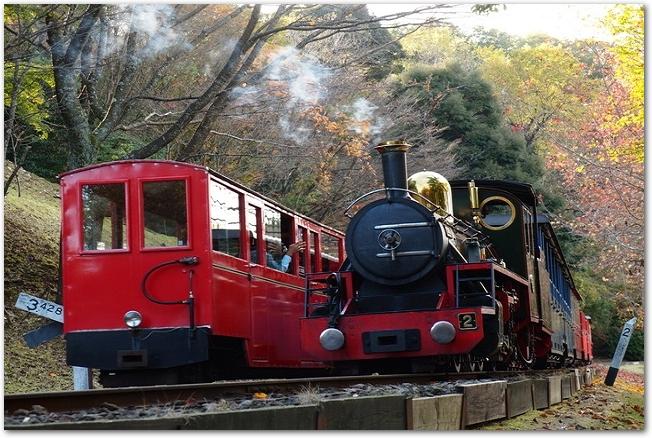 虹の郷を走るロムニー鉄道のSLの様子